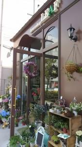 flower shop LEAF-1
